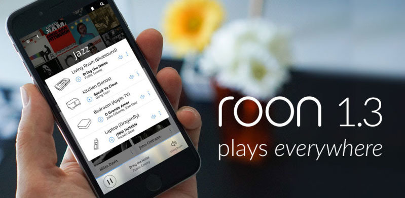 Roon 1.3