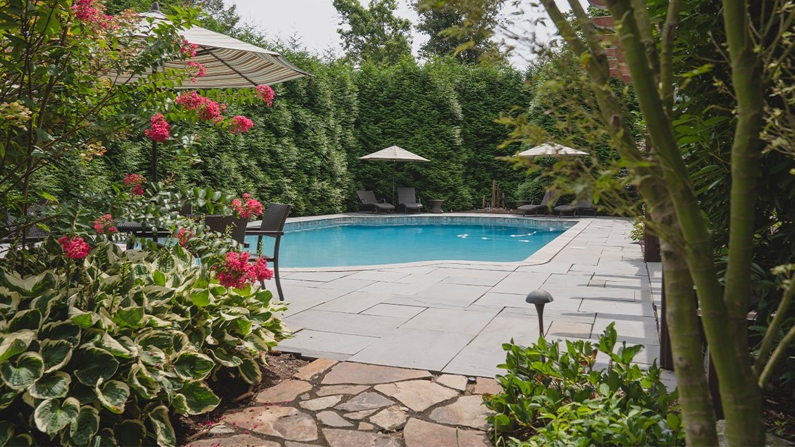 in-ground pool and foliage