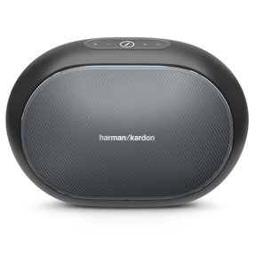 Omni 50+ Wireless HD Indoor/Outdoor Speaker with Rechargeable Battery (Black)