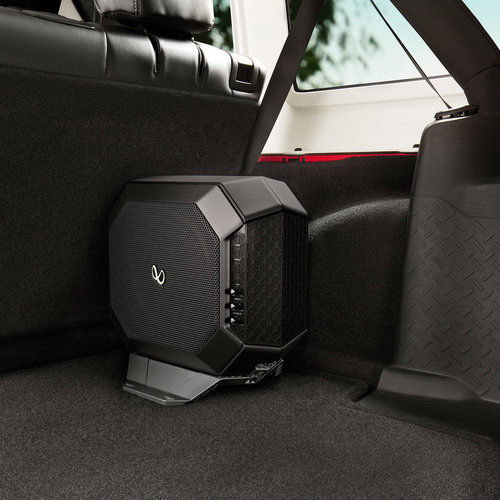 "View Larger Image of Powered 10"" Subwoofer System"