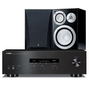 NS-6490 Bookshelf Stereo Speakers with R-S202 Stereo Receiver